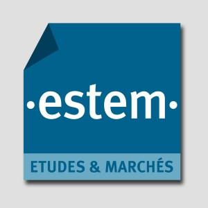 Estem /// logotype